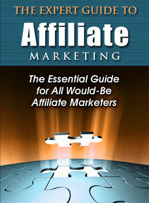 Product picture Expert Guide to Affiliate Marketing PLR + bonuses