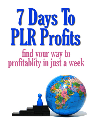 Product picture 7 Days to PLR Profits (MRR ebook) + Bonuses